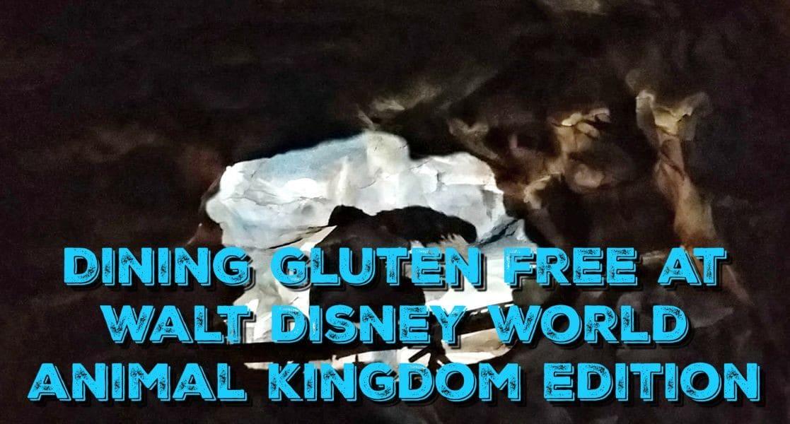 Gluten Free At Animal Kingdom - Animal kingdom table service